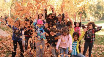 Campers throwing leaves in the air